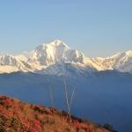 Nepal_023.jpg